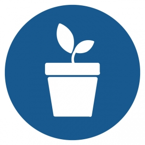 plant growing from a pot icon